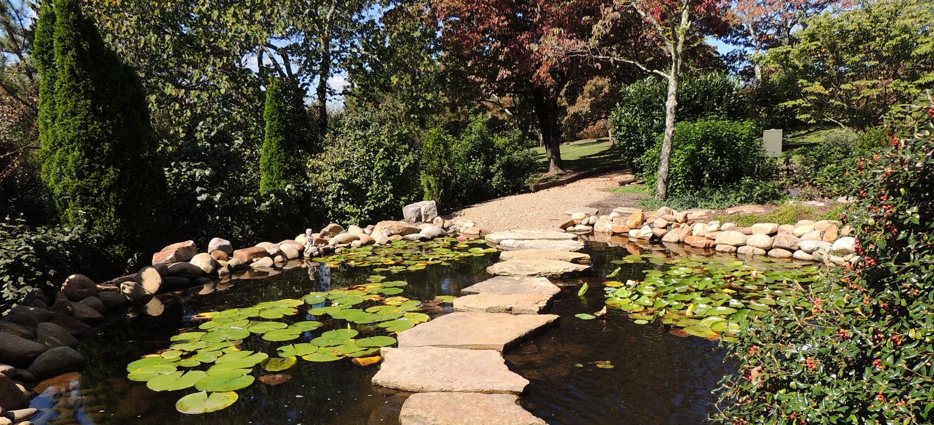 Pond installation pond repair pond maintenance in for Backyard pond maintenance