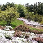 Country Garden Style Landscape