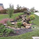 Eco-system Pond & Landscaping