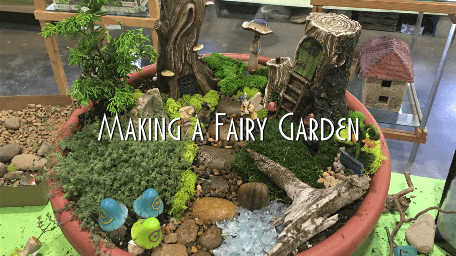 How To Make A Woodland Fairy Garden Willow Ridge