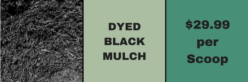 Dyed Black Mulch
