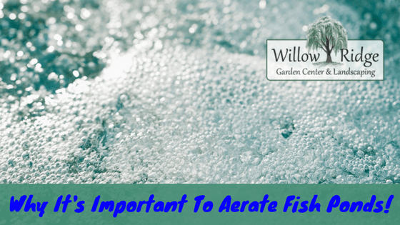 Why it 39 s important to aerate fish ponds willow ridge for Garden and its importance