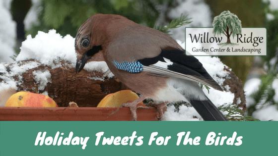 holiday tweets
