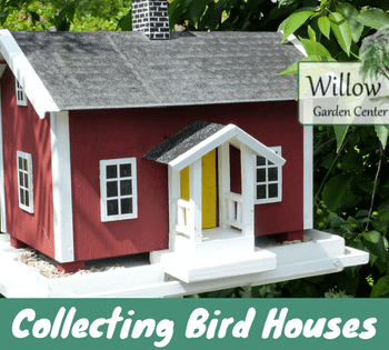 collecting bird houses
