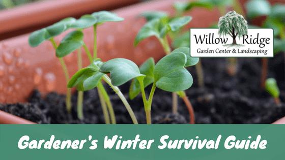 gardener's winter survival guide
