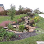 Eco-system Pond & Landscaping