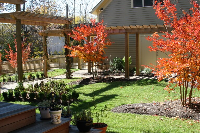 How To Plant Trees And Shrubs In East Tennessee Willow