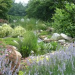 Landscaping Project with Koi Pond & Stream