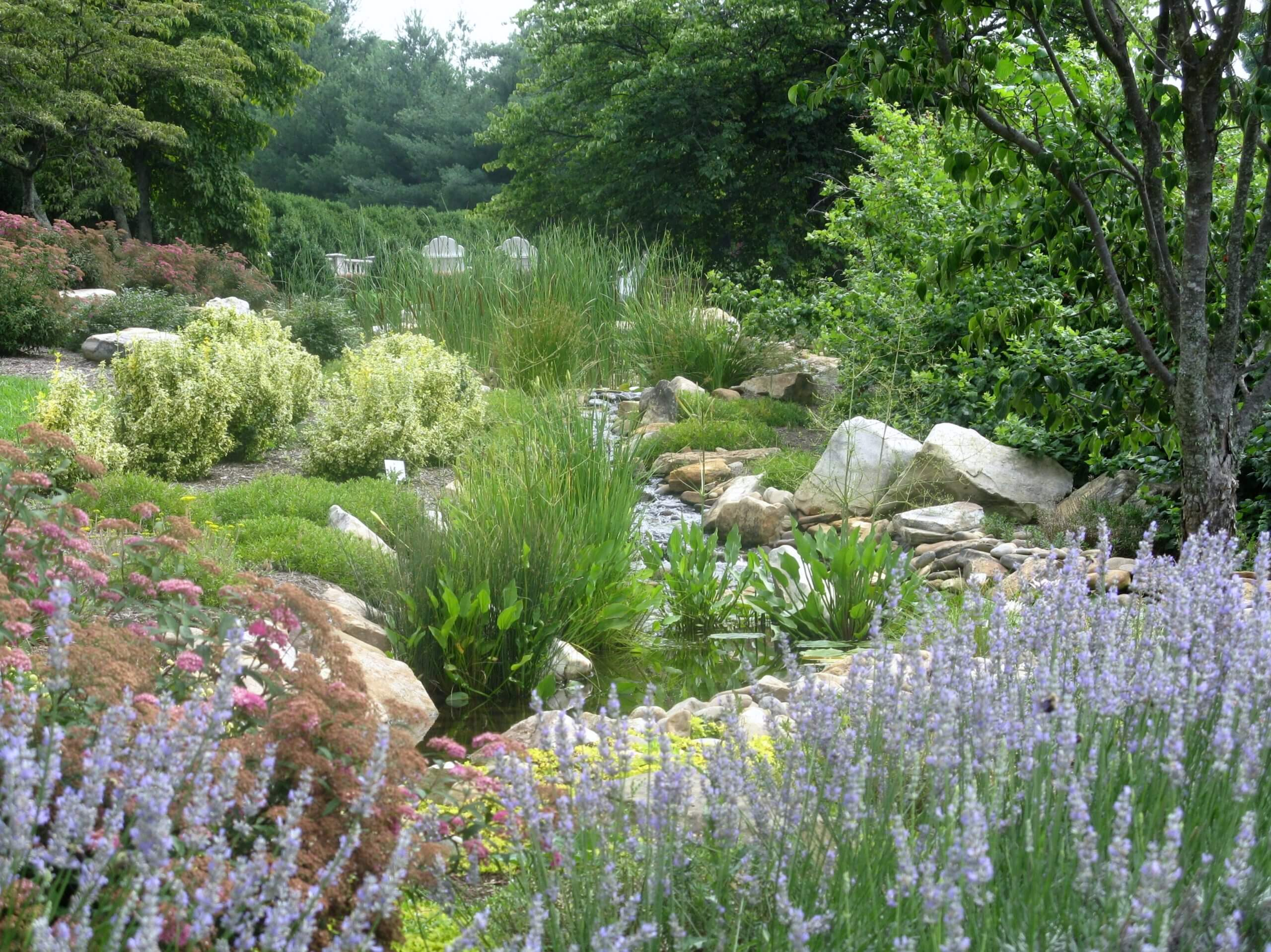 Traditional Style Landscaping Project with Koi Pond & Stream in Knoxville, Tennessee
