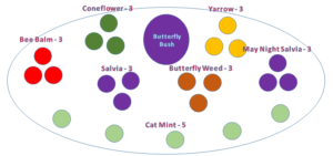 Pollinator Garden Diagram