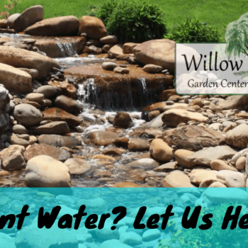 water feature design service
