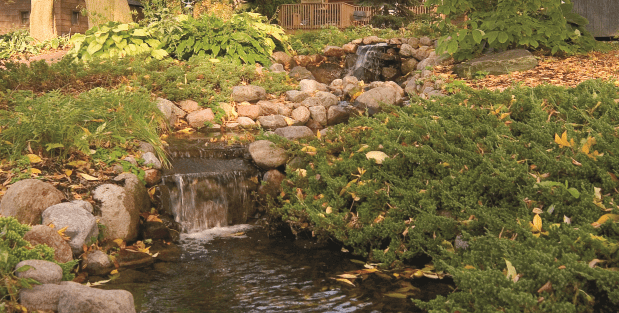 Cold Weather Pond Care