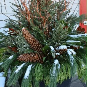 Winter Porch Pot