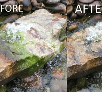 Control Algae With Ecoblast