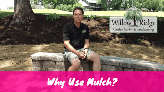 why use mulch