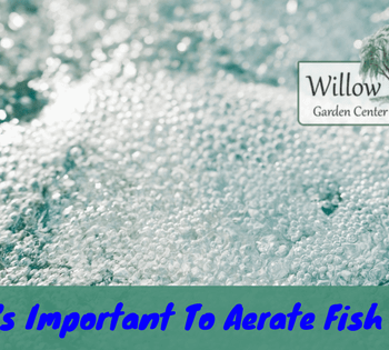 aerate fish ponds