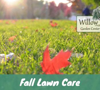 fall lawn care