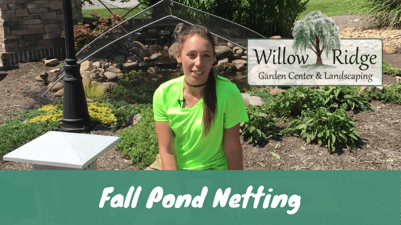 fall pond netting