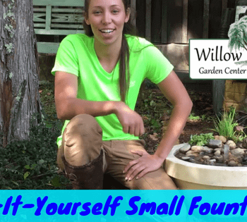 do-it-yourself small fountain