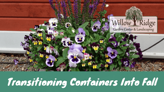 transitioning containers
