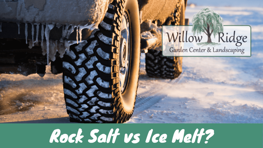 rock salt vs ice melt