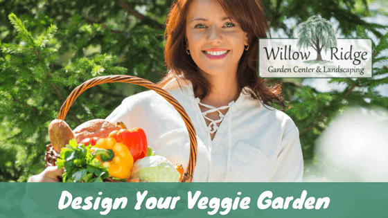 design your veggie garden