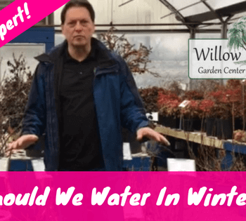 water in winter