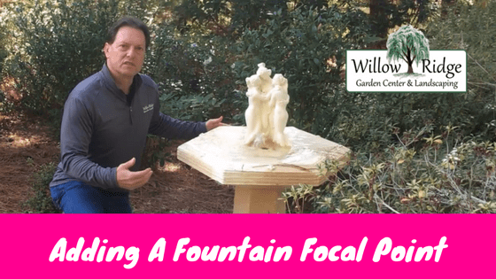 fountain focal point
