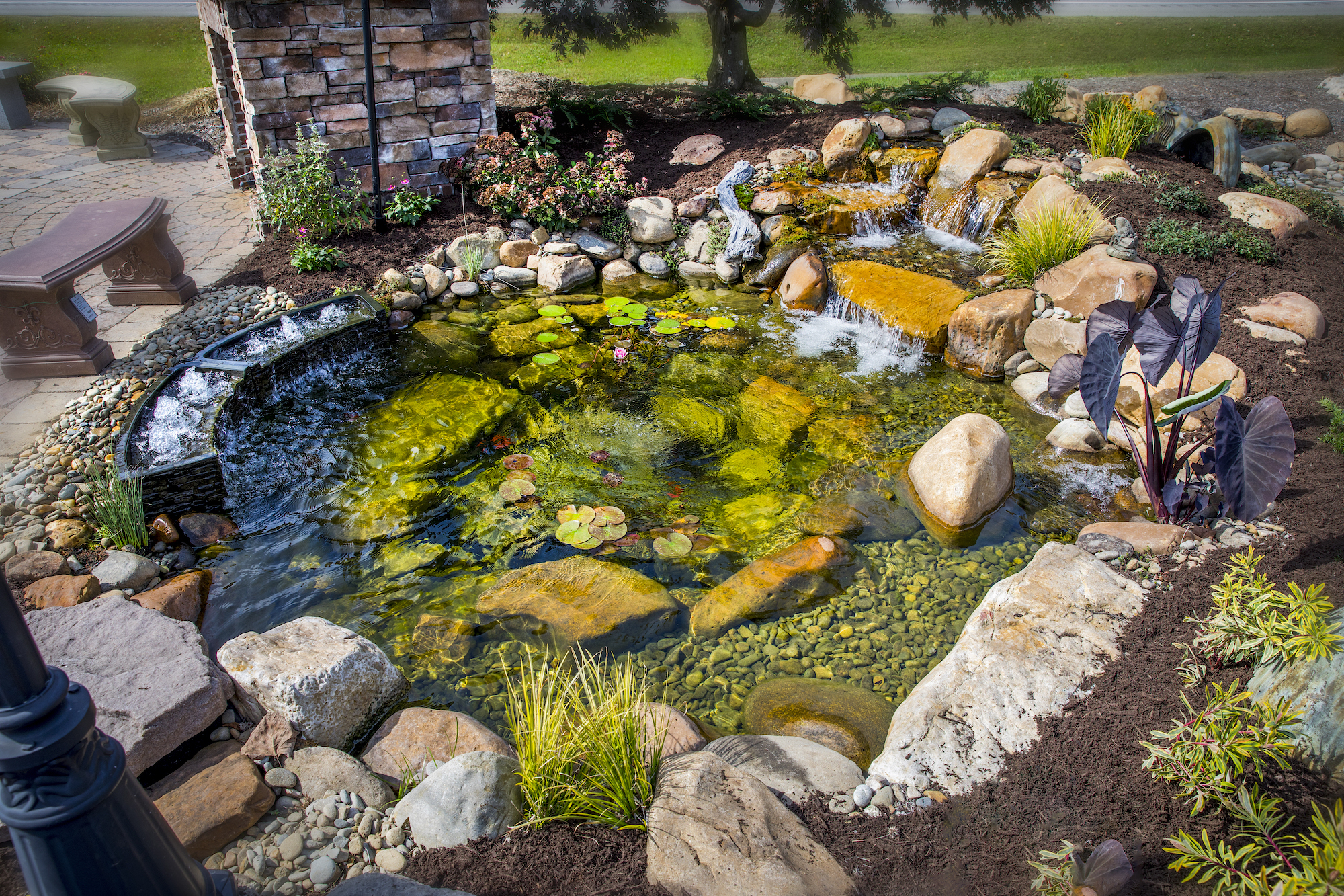 Pond Repair Services Knoxville TN
