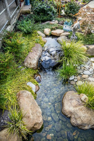 Water Feature Design Services Knoxville TN